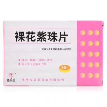 九芝堂 裸花紫珠片 0.5g*24s